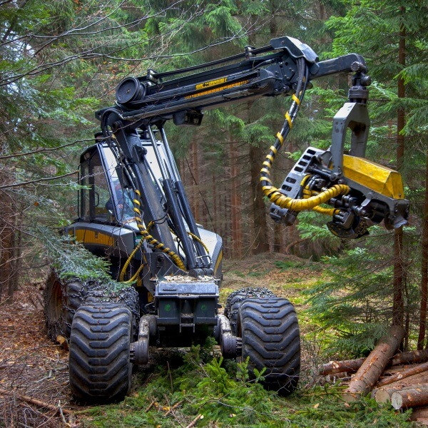 Mechanized Forest Equipment Operator